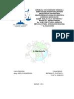 DESARROLLO HISTÓRICO DE LA GLOBALIZACIÓN (TRABAJO ESCRITO- ORIGINAL)
