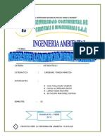 Informe Final de Estadistica 1
