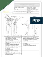 Ficha técnica blusa