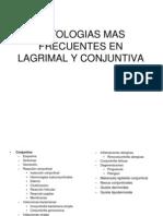 Conjuntiva y Lagrimal