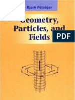 Livro Felsager Geometry Particles Fields
