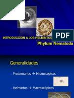 helmintosenfermeria-100712205638-phpapp02