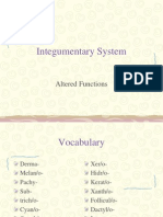 Integumentary System Pathophysiology