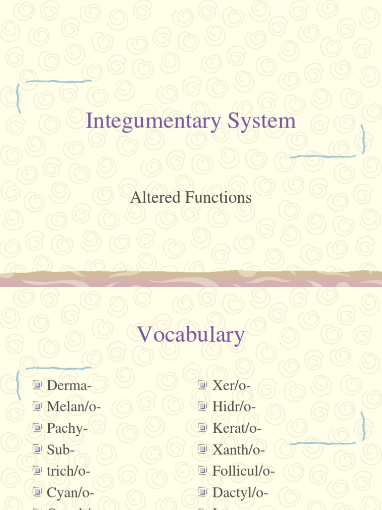 Integumentary System Pathophysiology Cutaneous Conditions Skin