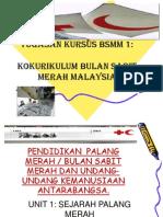 21652694-pbsm-1