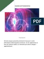 Induzione Elettromagnetica  -  Pizzardini Antonia