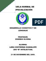 cfakepathdesarrollocognitivoydellenguaje-091222003520-phpapp01