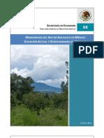 Monografia Aguacate
