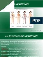 La_nutrición (1) Alicia - copia - copia