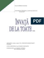 Proiect ISJ