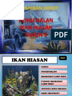 IkanHiasan
