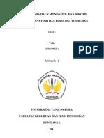 Jaringan Pada Daun Dikotil & Monokotil (Fix)
