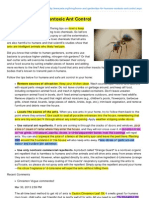 Nontoxic Ant Control