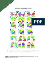 Segmen Paru Pada Gambaran CT Scan