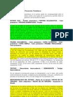 18001-23!31!000-1997-00007-01(18106) Copias Valor - Proteccion Del Estado Condiciones Para Responsabilidad 2009