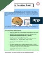 BrainBoxActivity.SU-Tech.pdf