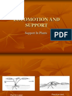 Support in Plants