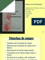 Patrones de las Manchas de Sangre.pdf