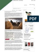 Info.kopp-Verlag.de Hintergruende Europa Prof-michel-cho
