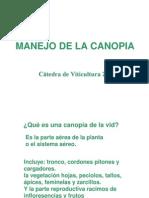 Manejo_Canopia_Desbrote