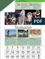 Sumario Revista Fiesta de la Cruz 2013