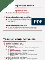 T Conjunctiv II Nutritie 2012