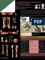 2011-10-25 Poster Sima Abraham Congreso Homínidos Pleistoceno