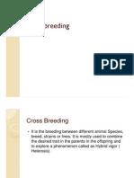Cross Breeding Abg
