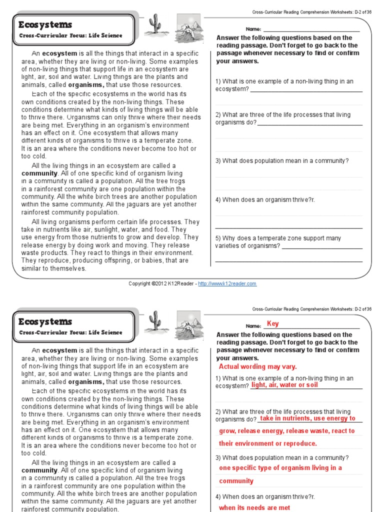 Worksheets Cross-curricular Reading Comprehension Worksheets all worksheets cross curricular reading comprehension gr4 wk2 ecosystems ecosystem life