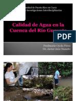 Calidad de Agua en la Cuenca del Río Guavate