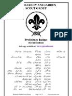 Proficiency Badges Outline Scouts