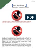 Infos Chalon braqueurs.pdf
