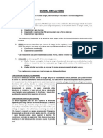 10._Sistema_Circulatorio.pdf