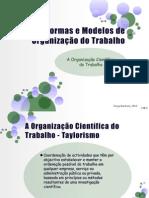 27619012 Formas e Modelos de Organizacao Do Trabalho