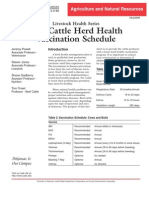 Beef Cattle Vax Protocol