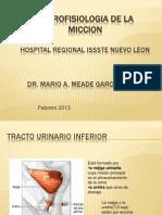 Neurofisiología de la micción.