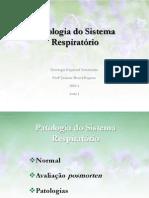 respiratorio120101-100428065857-phpapp01