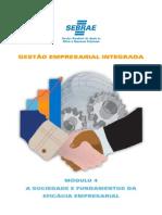 Gei PDF Modulo4