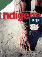 Brasil Indígena 3