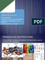 PRUEBAS MAGNETICAS (1)