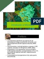 Aula de Micologia - 2012-2 Biotecnologia