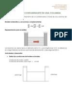 Practica 10. Flujo de Un Contaminante en Una Columna