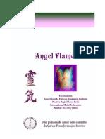 34233756 Apostila Angel Flame Reiki Varno PDF