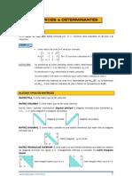 Matrices e Determinantes _Apuntes Mat2