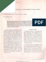 Red cell phosphoglycerate kinase in insullin-dependent diabetes mellitus