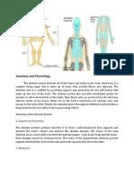 Anatomy(Ortho) (1)