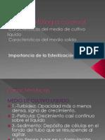 Presentacion Bacteriologia Morfologia Colonial EQ6