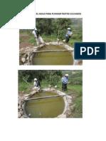 Utizando El Agua Para Funigar Pastos Culvados