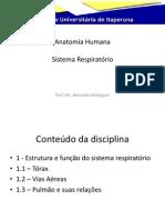 Anatomia Humana_aula06 (1)
