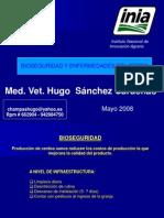 BIOSEGURIDAD y Enfermedades en El Cerdo